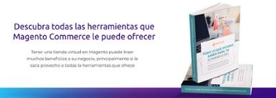 Ebook eCommerce b2C-1